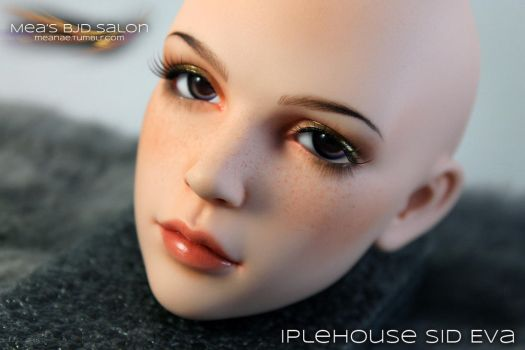 MBS - Face-up Iplehouse Eva by Meanae