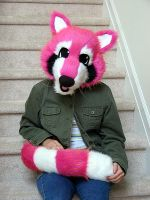 Submission: Pink Raccoon by Fursuit