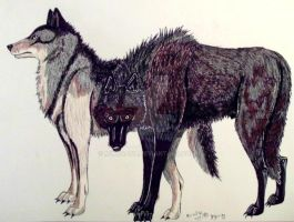 Wolves by MWRoach