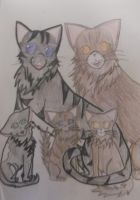 Brokenclaw and Ivypool and kits by Emaperatriz
