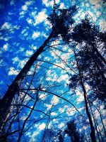Cerulean Skies by evelynrosalia