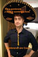 Sombreros are Cool! (WTF!?!) by MariposaLass-93