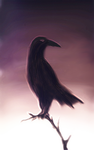 Lonely Raven by ark4n