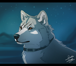 Under the stars by TheMysticWolf