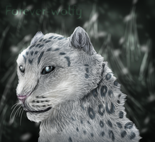 Snow Leopard by Forever-Wolfy
