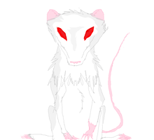 White Rat by TheSpiritCatcher