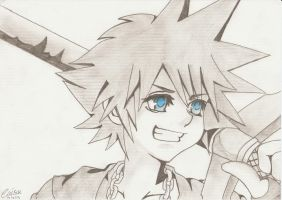 Sora by Inuyashafan001