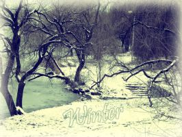 winter day by mag-lera