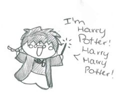 I'm Harry Potter by aviddaydreamer03