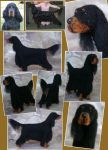 needle felted dog - Gordon Setter by flyingduster