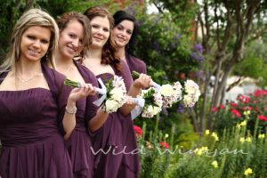 The Bridesmaids by WildWinyan