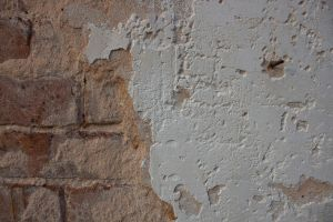 Brick and Plaster Texture 3 by element321