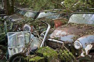 Abandoned Cars by chrisguf