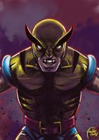 Daily Sketches Wolverine by fedde