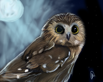 Owl by Paintedingold