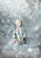 Snow Queen by Toefje-Kunst