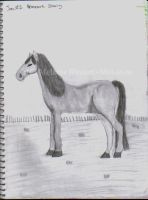 Horse in a Field by Mel-at-ne