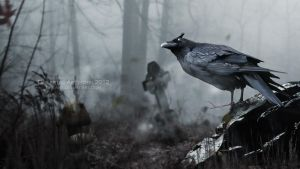 crow by dhe-art