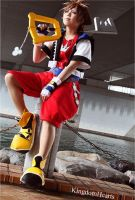 Sora ~Kingdom Hearts by Heartyful