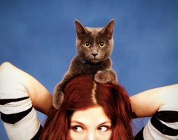Cat is a Hat by lostpariah