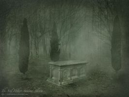 The Soil Where Shadows Bloom by GothicNarcissus