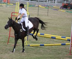 STOCK Showjumping 446 by aussiegal7