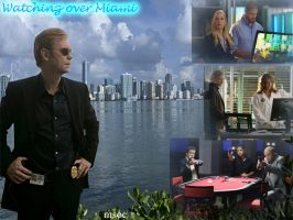 CSI Miami: Watching over Miami by ScifiNutAlways1999