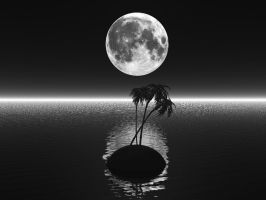 Palm trees howling at the moon by DarkRiderDLMC