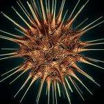 Urchin by waste-and-tragedy