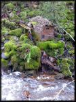 And water flows... by Yancis