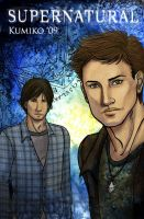 Winchester Brothers by kumitawapa