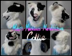 Collie Fursuit Head by HandsterButtonz