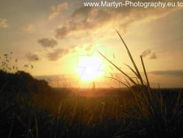 Martyn Photography - Pic 02 by MartyniProductions