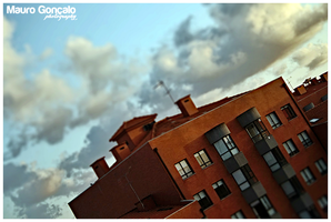 Sweet Afternoon, Tilt shifted by mauro-goncalo