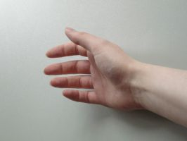 Hand 01 by Fea-Fanuilos-Stock