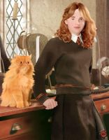 Hermione and Crookshanks by aneesah
