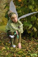 Tinker Bell - The Tracker by Rayi-kun