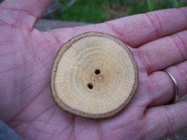 Large Oak Wood Buttons by PymatuningCrafts