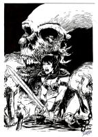 Xena cover by RyouKugaInk