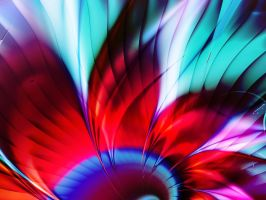 Whirlwind Flower by janinesmith54