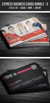 Express Business Cards Bundle - 5 by EgYpToS