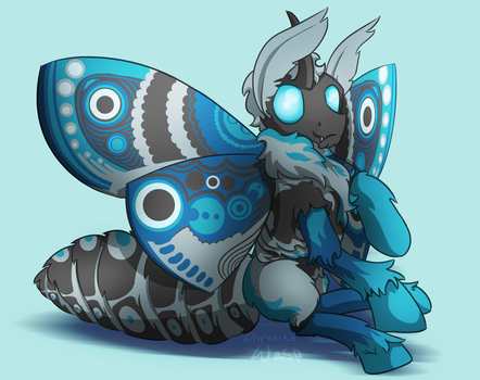 MOTH by QQ-Incorperated