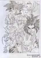 GOKU SUPER SAIYEN FORMS by REROHAN