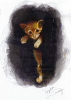 My Cat Ginger 6 by angela-wong