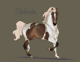 Flash Auction - Shalinda by abosz007