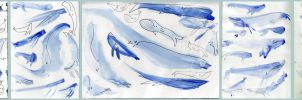 alot of watercolour whales 2 by Mensaman