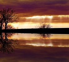 Reflection of a Daydream by krissybdesigns