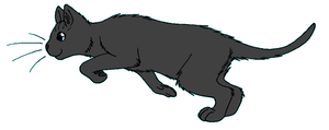 ThunderClan - Rainwhisker by WildpathOfShadowClan