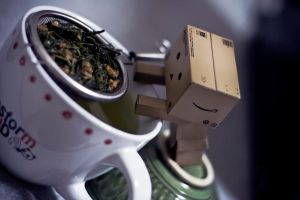 My Danbo-San  I want some tea by Wictorian-Art