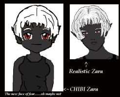 Zara chibi vs real style by CrypticStar